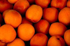 Apricot, Tropical Fruit, Fruit Stock Photography