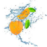 Apricot in water splash Royalty Free Stock Photo