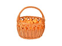 Apricot in wattled basket Stock Image