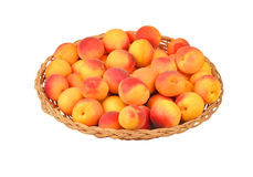 Apricot in wattled plate Stock Image