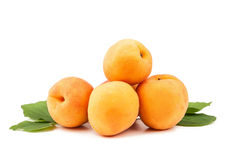 Apricot. On white background royalty free stock photos