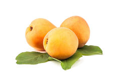 Apricot. On white background Royalty Free Stock Photo