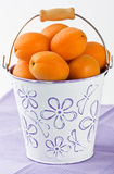 Apricot in white bucket Stock Photo
