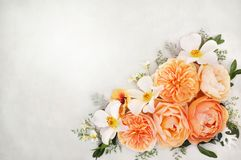 Apricot and white roses flowers composition background stock image