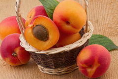 Apricot in wicker basket Royalty Free Stock Photos