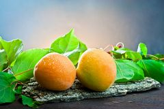 Apricot on wood and background leaf Royalty Free Stock Photo