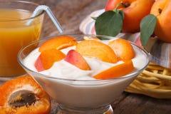 Apricot yoghurt and fresh juice closeup horizontal Royalty Free Stock Image