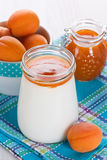 Apricot yogurt Royalty Free Stock Photo