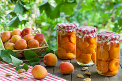 Apricote compote Royalty Free Stock Images