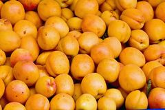 Apricots Royalty Free Stock Images