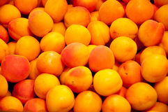 Apricots. Many juicy apricots for sale at Munich market stall stock photography