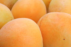The apricots Stock Image