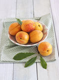 Apricots. In a bowl on rustic wooden table stock photos
