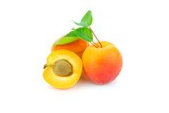 Apricots. royalty free stock photos