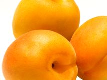 Apricots. Three apricots on white background Royalty Free Stock Photo