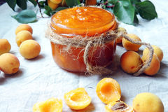 Apricots and apricot jam Royalty Free Stock Photography