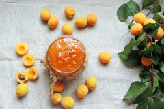 Apricots and apricot jam Royalty Free Stock Photo