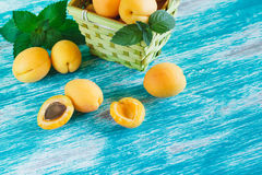 Apricots in the basket with mint Stock Photography