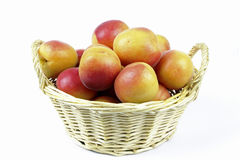 Apricots in the basket Stock Photography