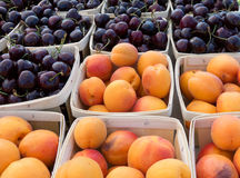 Apricots and Bing cherries. At the farmers market stock photos