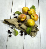 Apricots and black currant on a white wooden background. Apricots and black currant with a burlap cloth on a white wooden background stock photography