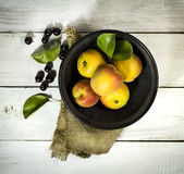 Apricots in black plate and blackcurrant on wooden background. Apricots in black plate and black currant with burlap cloth on a white wooden background stock photography