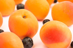 Apricots and Blueberries on White Background Royalty Free Stock Images