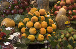 Apricots at the Boqueria market Stock Photography