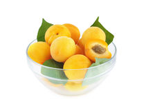 Apricots in a bowl Royalty Free Stock Image
