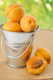 Apricots in a bucket. On a green background with bokeh Stock Images