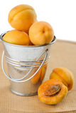 Apricots in a bucket. Isolated on white background Royalty Free Stock Photos