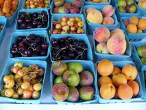 Apricots, cherries and plums at the market Stock Photography