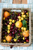 Apricots and cherry Stock Image