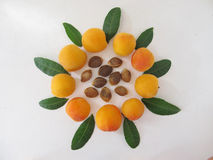 Apricots. Royalty Free Stock Photos