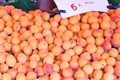 Apricots on a counter of shop Royalty Free Stock Photos