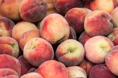 Apricots on a counter of shop Stock Photography