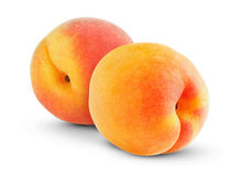 Apricots. Delicious fruit apricots isolate on white royalty free stock photo