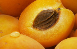 Apricots and drop. Closeup of apricots and drop stock photography