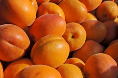 Apricots at a farmers' market Royalty Free Stock Images