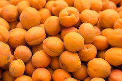 Apricots at the farmers market Royalty Free Stock Photo
