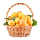 Apricots Stock Photos