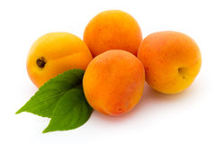Apricots. Royalty Free Stock Images