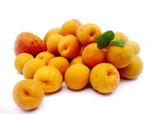 Apricots fruit. On a white background Royalty Free Stock Photography
