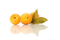 Apricots with green leaf. Apricots with leaf and their reflection on white  isolated background Stock Photos