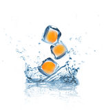 Apricots in Ice cubes splashing into the water Royalty Free Stock Photos