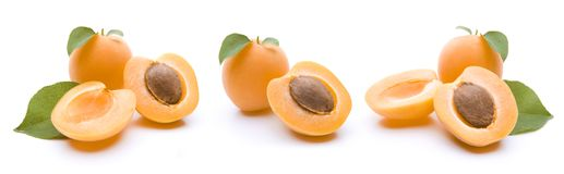 Apricots isolated. On white backgraound royalty free stock photo