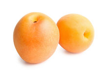 Apricots isolated on white background. Apricots. Ripe fresh apricots isolated on white background Royalty Free Stock Photo