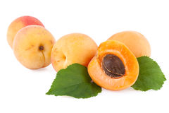 Apricots isolated on white Royalty Free Stock Photography