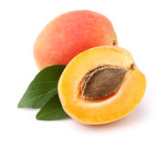 Apricots with leaf Stock Photo