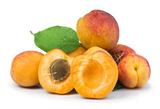 Apricots and leaf white isolated Stock Photography